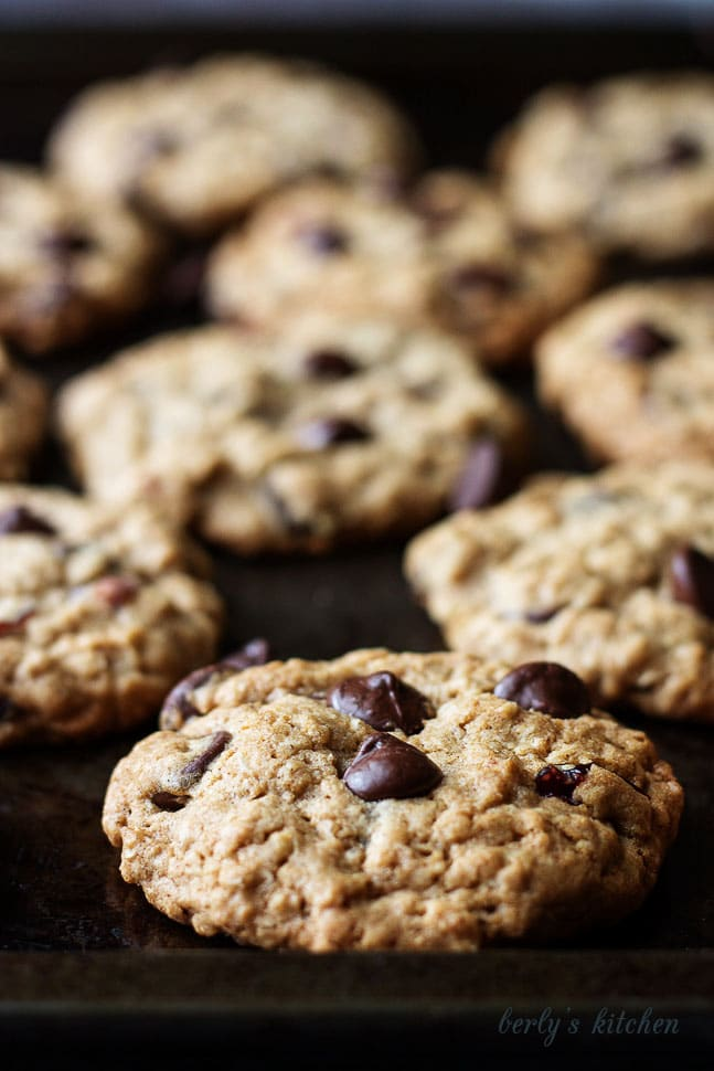 Close up of Cranberry Dark Chocolate Chip Oatmeal Cookies on a cookie sheet.