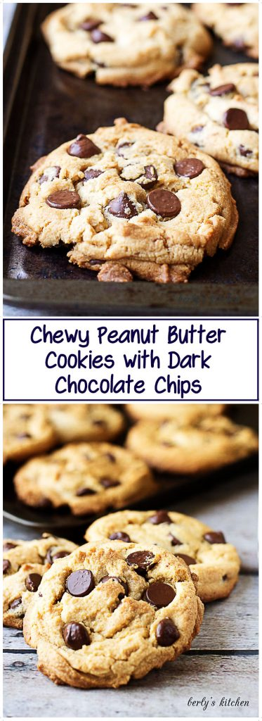 Chocolate chip peanut butter cookies on a baking sheet.