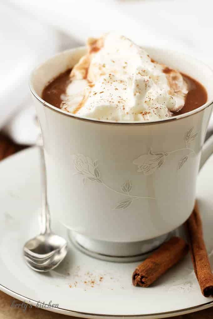 The hot cocoa in a white cup topped with whipped cream and cinnamon.