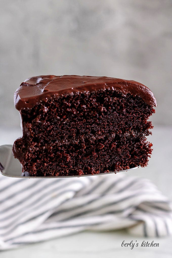 A large slice of the cake highlighting the layers and chocolate ganache.