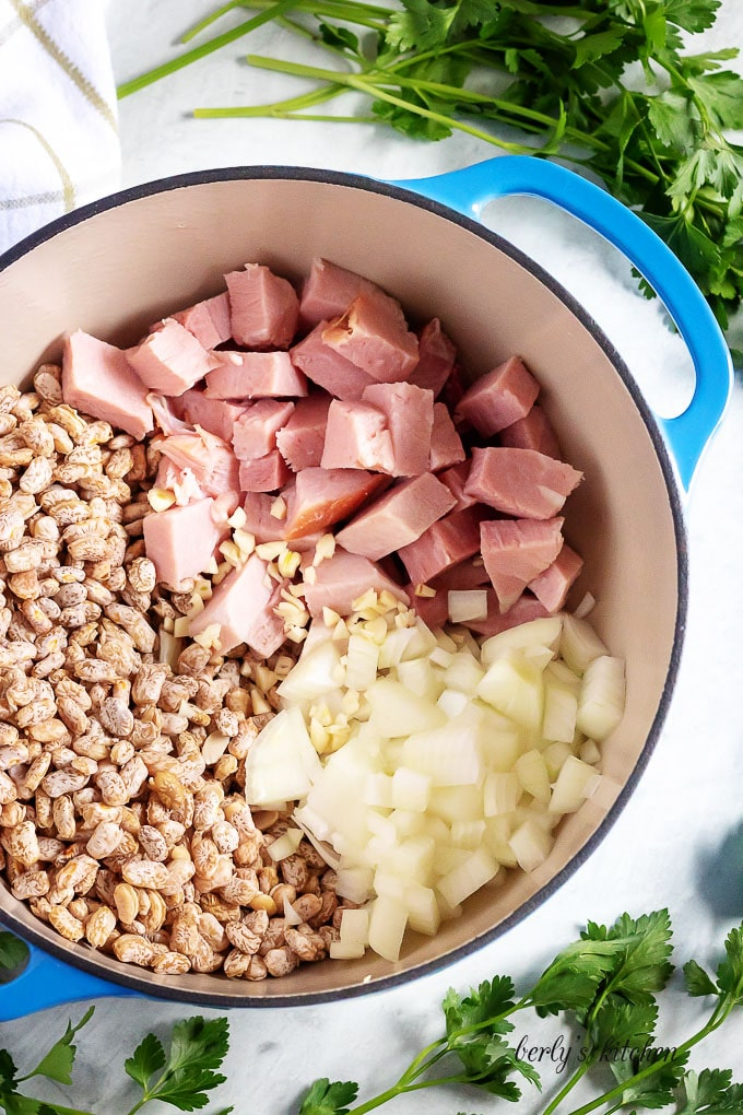 Top-down view of the ham, beans, and onions, in the pot.