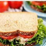 A simple tuna salad sandwich served on whole wheat bread.