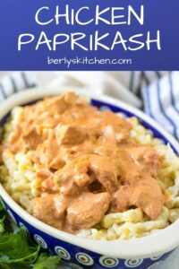 Chicken paprikash in a decorative blue bowl served with spaetzle,