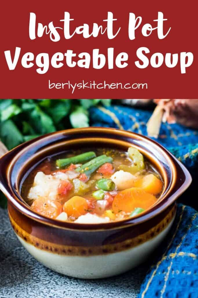 Instant Pot vegetable soup showing all the veggies.