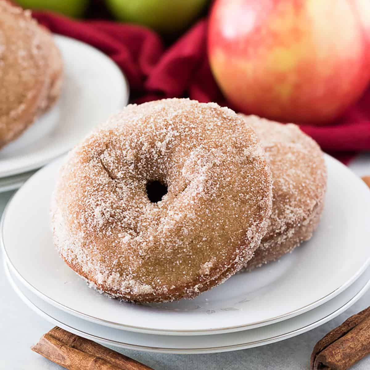 Two apple cider donuts on a white plate.