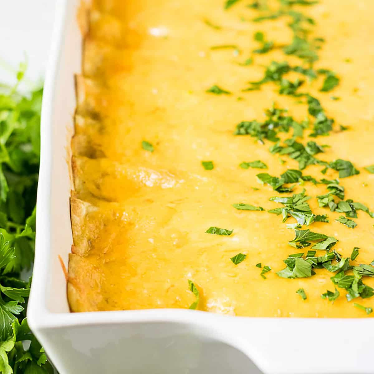 Baking pan full of cheesy breakfast enchiladas topped with chopped parsely.