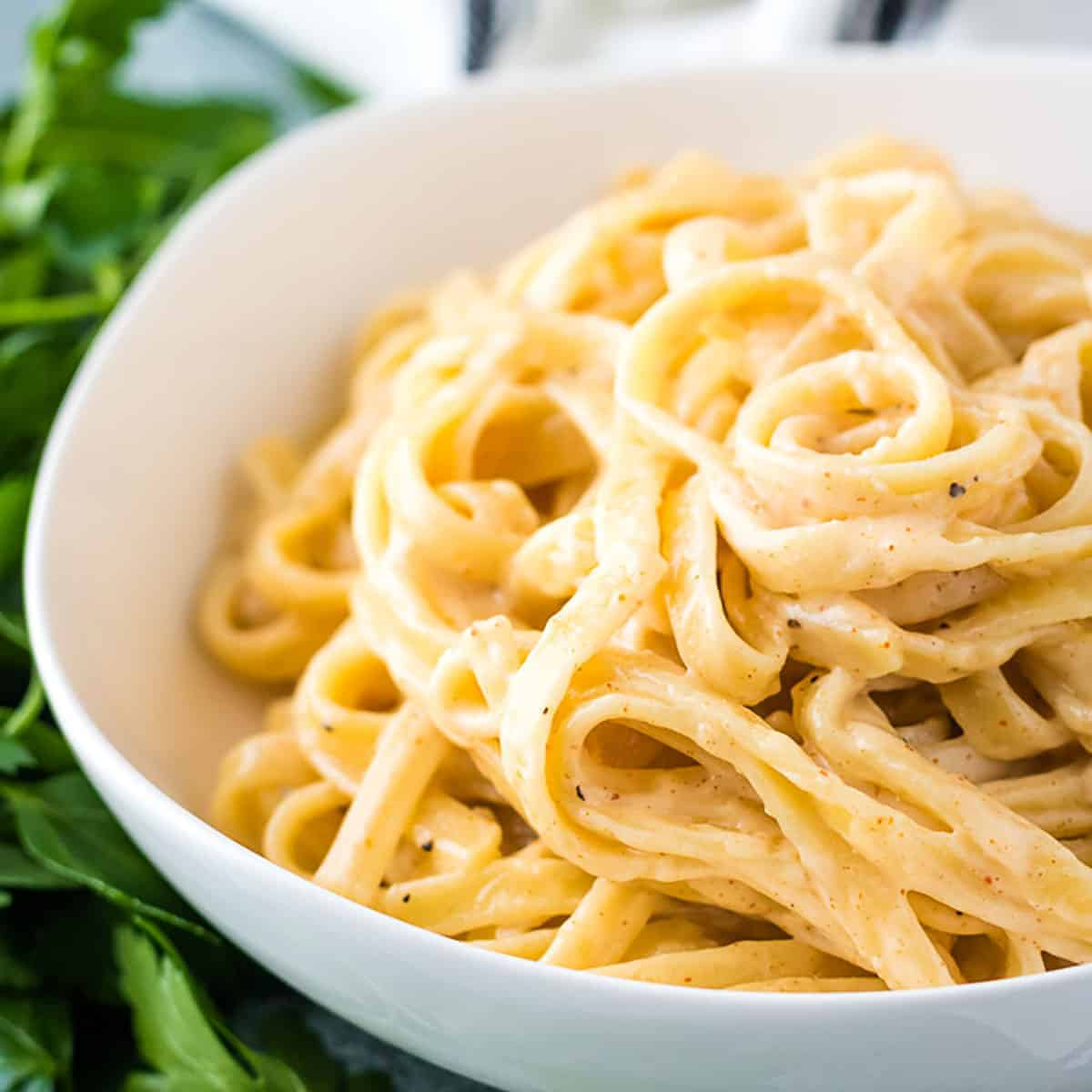 White bowl filled with spicy fettuccine Alfredo.