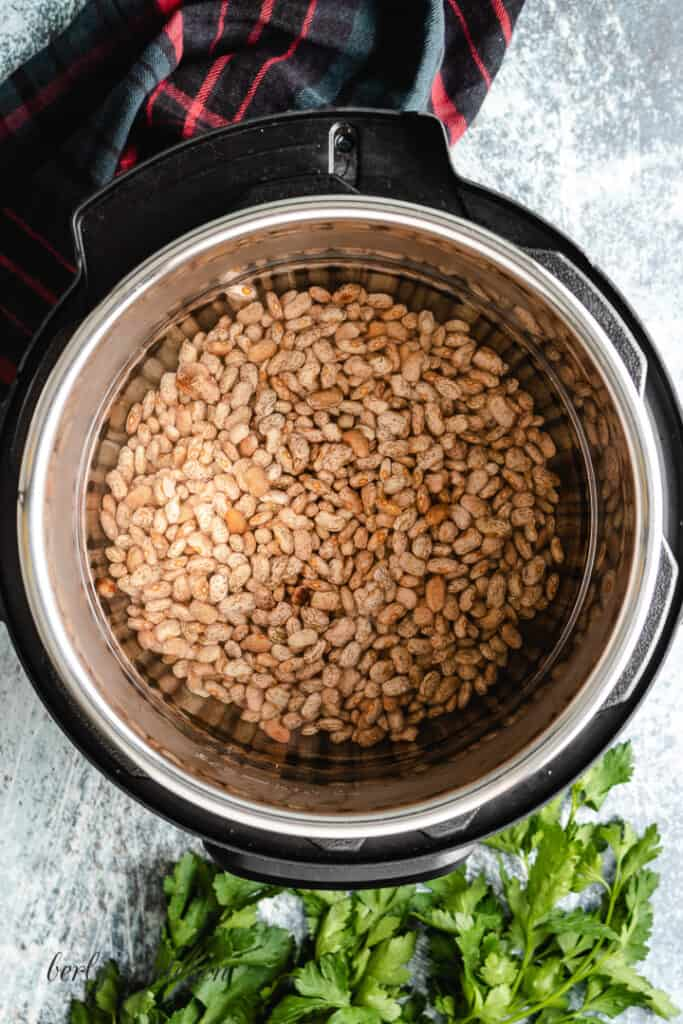 Uncooked pinto beans and water in the pressure cooker liner.