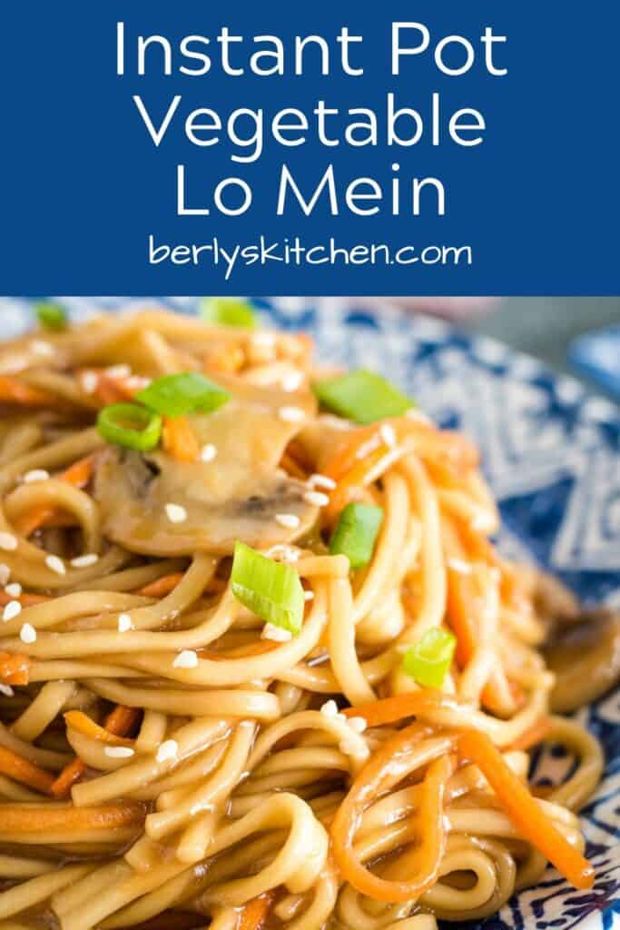 A close-up of the Instant Pot vegetable lo mein showing the veggies.