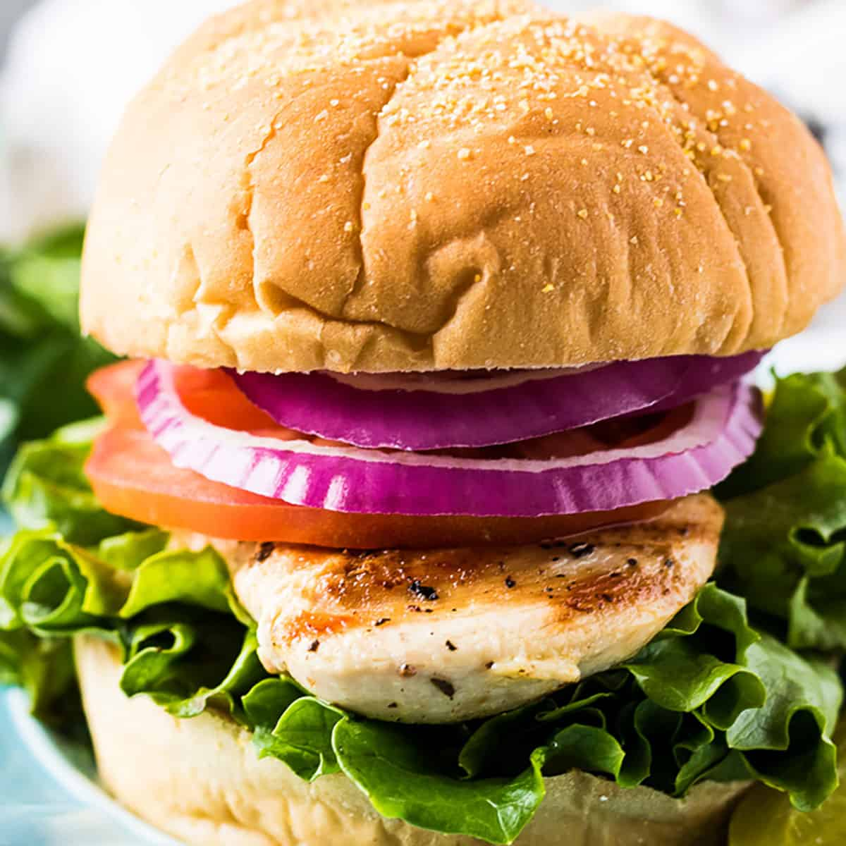 Grilled chicken sandwich with lettuce, tomato, and onion on a Kaiser roll.