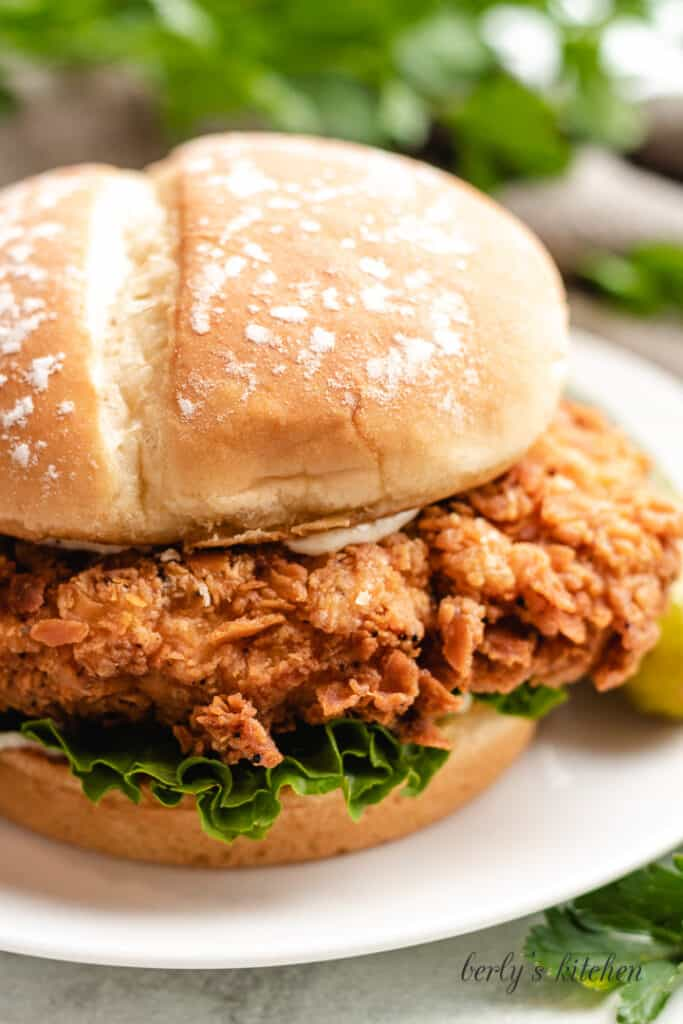 A close-up view of the chicken sandwich on a plate.