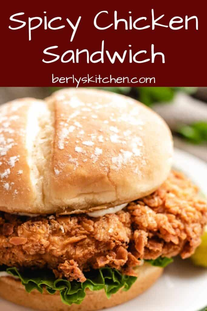 An up-close view of the spicy chicken sandwich.