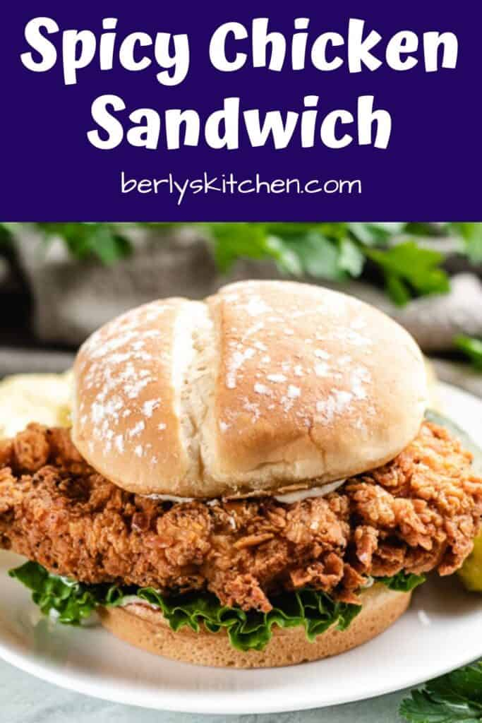 The spicy chicken sandwich on a small white plate.