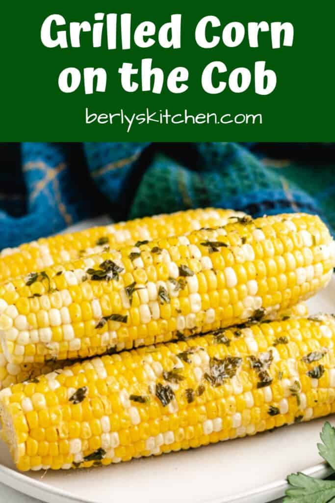 Seasoned and grilled corn on the cob served on a plate.