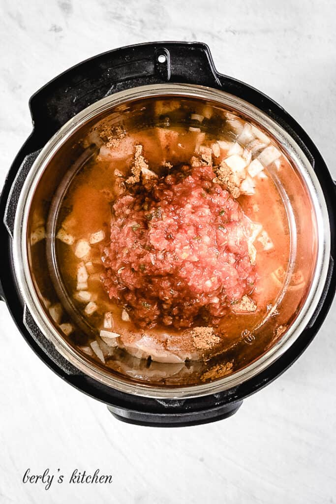Top down view of salsa, chicken, and seasoning in an Instant Pot.
