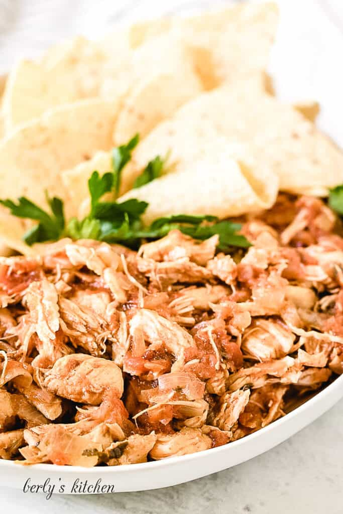 Shredded chicken with salsa and seasonings on a plate.