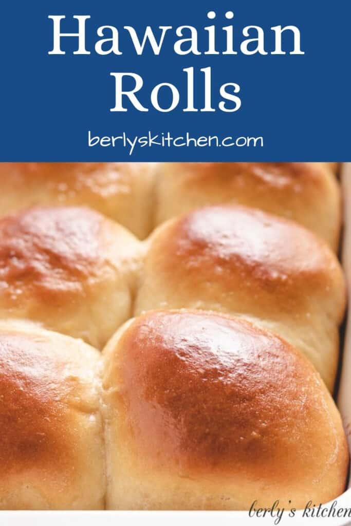 A close-up view of fresh baked Hawaiian rolls.