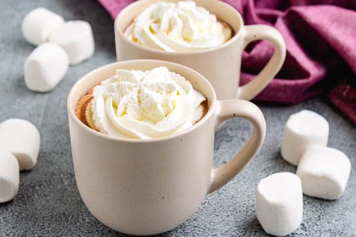 Two cups of the hot chocolate with chocolate chips.