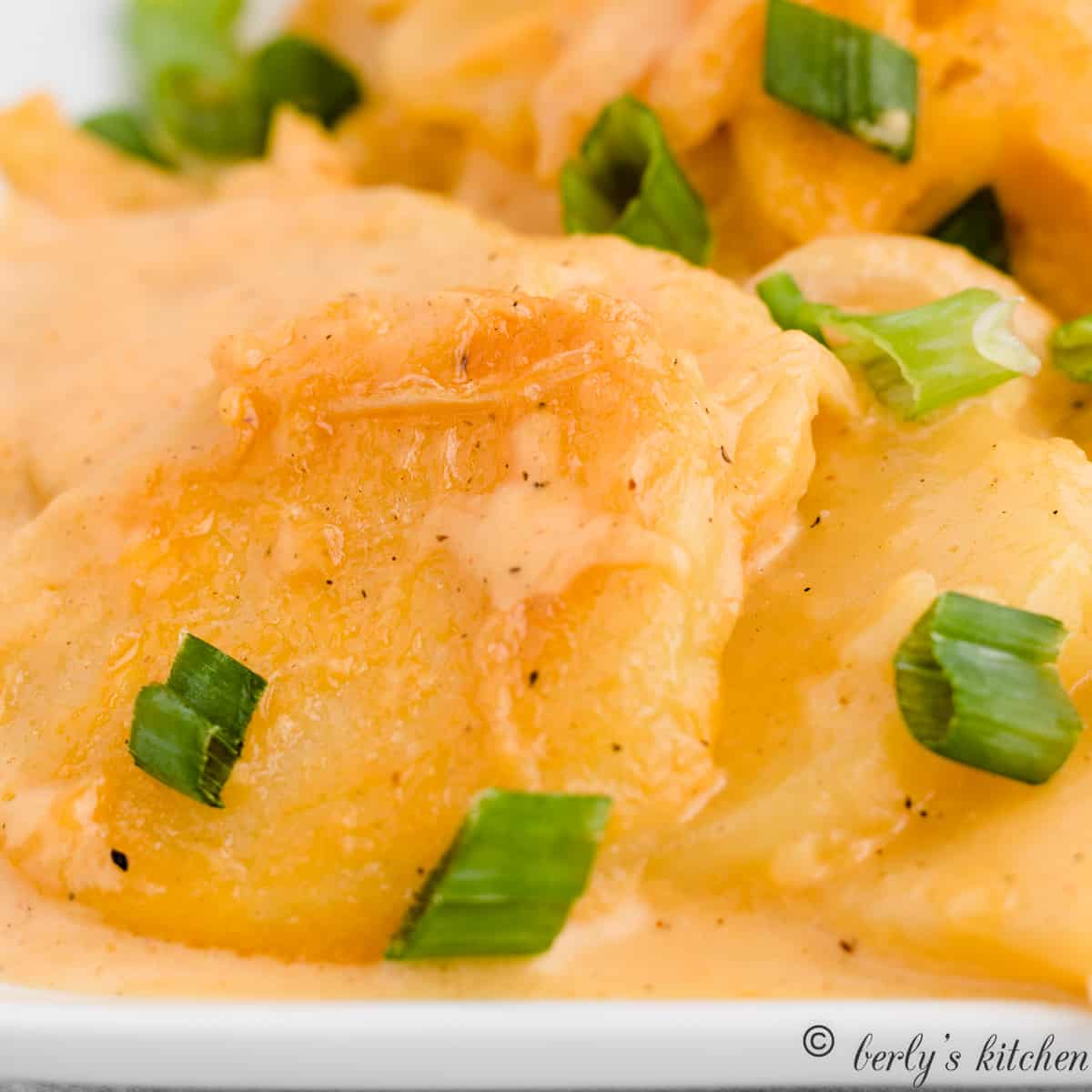 Creamy scalloped potatoes garnished with green onions.
