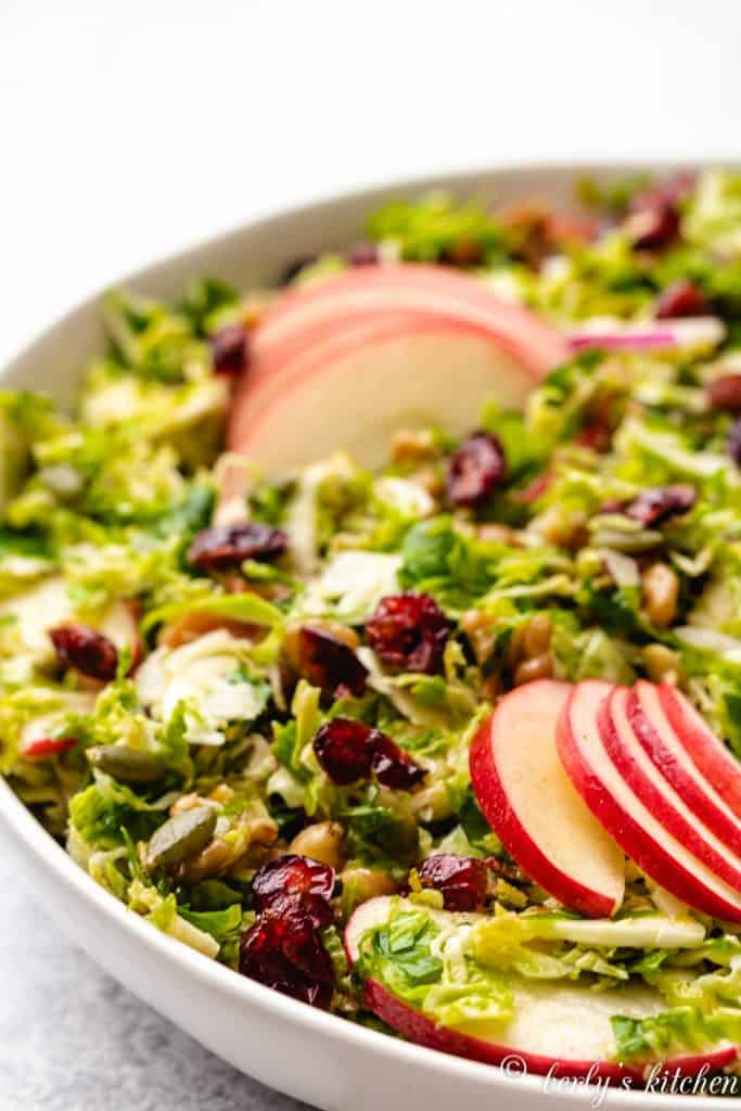 The shaved brussel sprout salad garnished with dried cranberries.