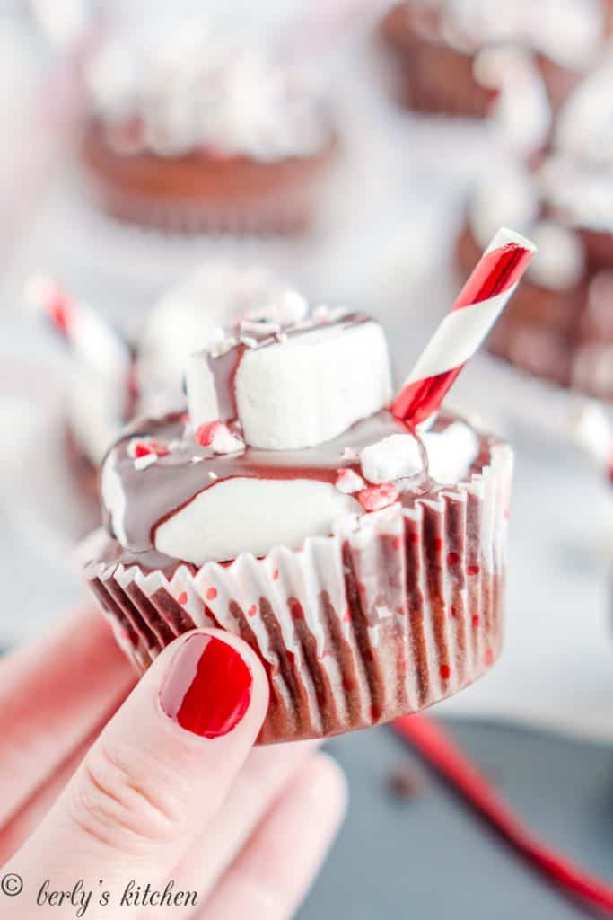 A cupcake garnished with frosting, marshmallow, and crushed peppermint.