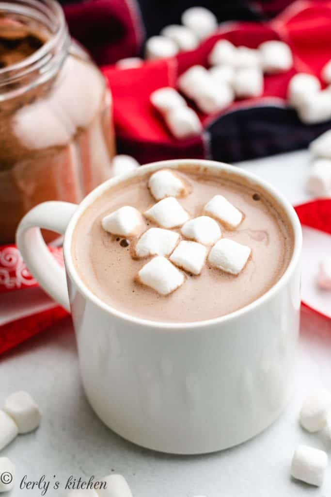 Cup of hot chocolate with marshmallows.