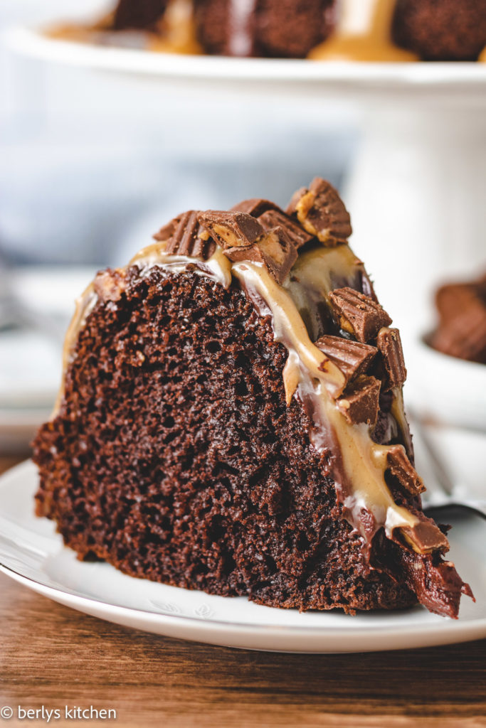 Chocolate cake covered with peanut butter sauce.